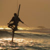 Stilt Fishing - Weligama